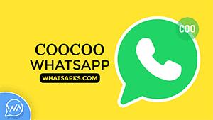 coocoo whatsapp thumbnail